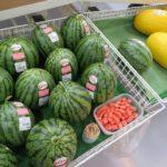 夏のおいしい果物が並びます。
