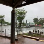 本日は大雨です。