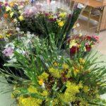 盆花、盆ゴザ、お供え果物、野菜、等々入荷しております。