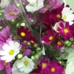 切り花ミニブーケ人気です!